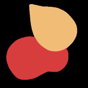 icône-couleur